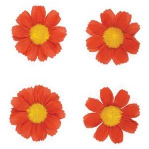 Basil 4 bloemetjes rd